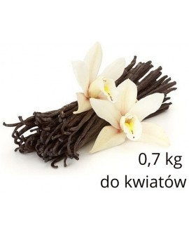Masa do kwiatów Smartflex Flower 0,7 kg Gum Paste