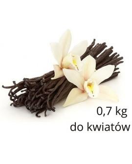 Masa cukrowa Smartflex Flower 0,7 kg do modelowania kwiatów Lukier plastyczny