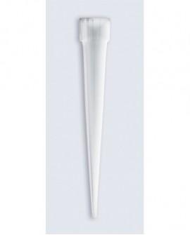 Uchwyty/ pojemniczki do kwiatów 50 mm Culpitt  mikro 6 szt